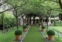 Gardens / by NC Living