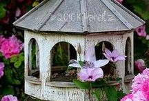 Bird Houses / by Diana Lentz