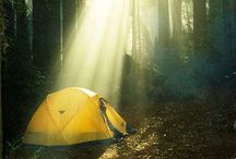 Happy Camper / Camping, glamping, and gear / by Ivy Bier