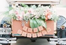 Peach Wedding / Not quite orange but not quite pink...peach is for you! Some of our favorite peach wedding decor inspiration!