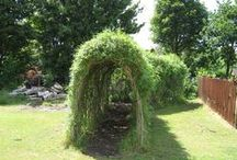 Willow / Willow Dens, Willow Teepees, Willow Wigwams and willow tunnels - in fact all the willow structures a child could ever wish for.  See our website www.kidsinthegarden.co.uk for more ideas and how to plant.