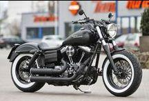 In my Harley-Davidson's world
