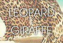 Leopard + Giraffe