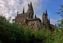 Florida/Harry Potter World Trip / by Angela Clark-Praxis