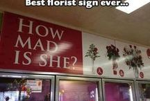 Hillarious Signs