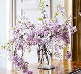 Florals & Centerpieces / floral, centerpiece, and event decor ideas