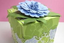 Boxes / by Diana Larsen