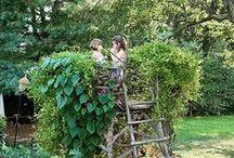Go Go Garden / Home garden inspo