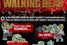 The Walking Dead / All things walking dead AMC the walking dead Tv shows Talking dead aftershow zombies  Daryl Rick Michon carol Glenn Maggie carl  / by Jamie K