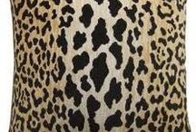 Animal Print / by Meg Opel