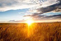 Sunrise & Sunsine / #sun #sunrise #sunsine #sol #amanecer #atardecer / by María José Castañer