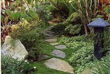 The garden path / by Dana Hendley