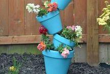 Gardening / by Alyssa Griffith