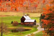 Fall Stuff / How Autumn works: leaf peeping, crisp temperatures, hay rides, caramel apples and more!  / by HowStuffWorks