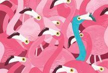 pink+blue / by Rebecca Dunham