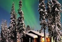 winter / by Marika Piekkala