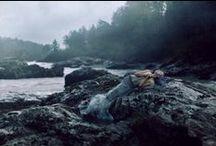 Submerged / by Alyssa Tidwell