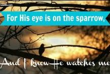 New Life Live #Devotionals / Short, powerful words of #encouragement for every new day.