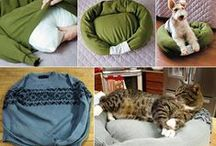 Pets Love Goodwill Too! / Goodwill DIY, Finds and Inspiration for your 4-legged family members!