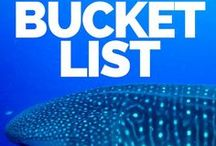 Travel Bucket Lists / Need some inspiration for your own Travel bucket list? Find bucket lists for every country, budget and travel style.