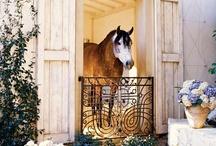 Do You Live in a Barn? / Horse Barns Farms Photos and Ideas