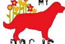 Dog Days / Dog Photos, Dog Accessories, Dog Art