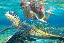 Family Travel Hawaii / by Family Travel with Colleen Kelly