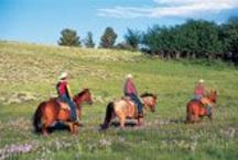 Wyoming / by Family Travel with Colleen Kelly