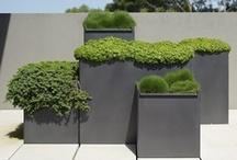 [ container garden ]