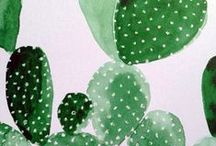 Art and Design / Cactus and succulent inspired creations