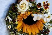 Wedding and Reception  /  Fall Rustic Barn - Dream Wedding and Reception   / by Jessica Taskey