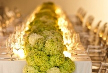 Wedding Ideas / by Lavanda Watkins