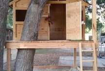 | TREE HOUSES | / Children will love these...maybe even the adults!