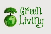 Green Living / Green is who we are!  Join us in learning the many ways to be GREEN and save our world! / by DeDa Studios