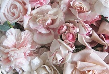 PINK & PRETTY / Pink, pink and more pink...the happy colour! / by •❈•Sue Finnerty•❈•