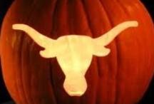 Texas Longhorns  / Longhorn Pride! / by Lisa Rose