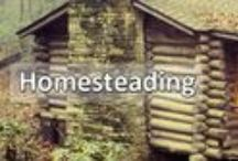 Homesteading - Self Sufficiency / Off Grid / by Jessica Maye