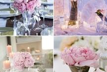 Wedding things etc. / by Emily Marie