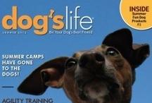 Great Dog Magazines