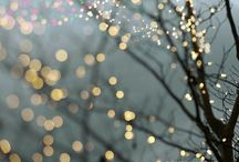 Have Yourself a Merry Little Christmas... / Let your <3 be light..... / by Jamie Wilson