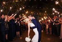 MMTB Wedding Portraits / Beautiful Portraits from Tampa Bay Weddings