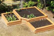Garden Ideas / by Sharon Rogers-Anderson