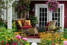 Garden & backyard
