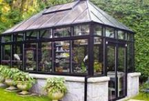 Greenhouse / by Roxanne Townshend