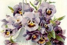 винтаж цветы картинки
