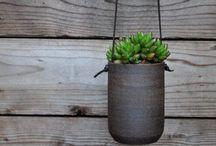 Botanical / by designmerchants