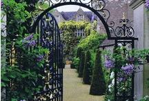 Garden / by Becky Bowman
