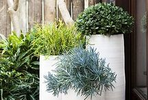 Outdoor Spaces / by designmerchants