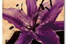 Purple Canvas Art / Purple Canvas Art