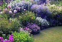 Planting My Flower Garden